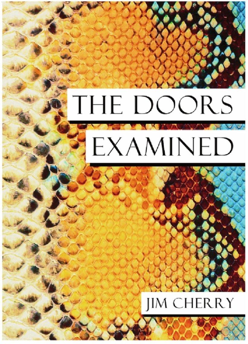 doorsexamined